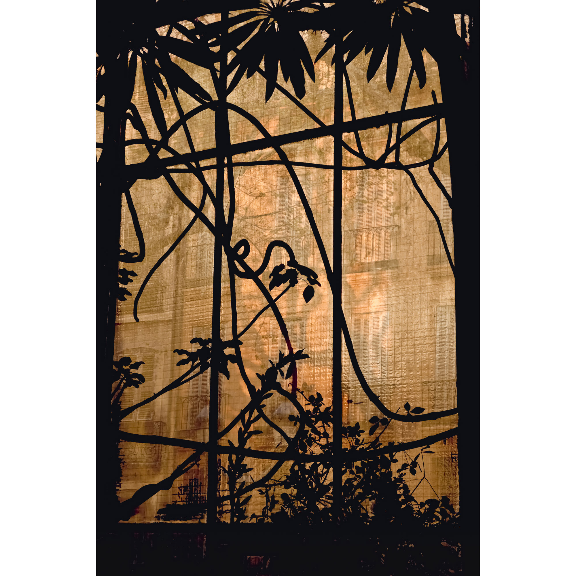 Silhouette Conservatory tempered glass print